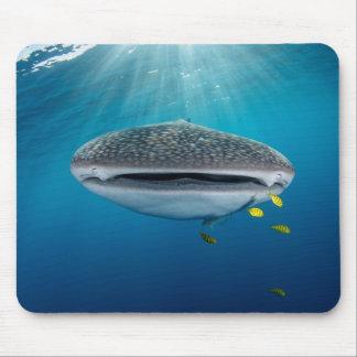 Head of a Whale Shark Mouse Mat