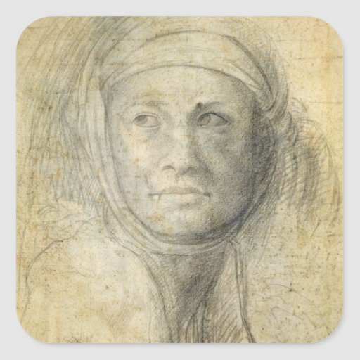 Head of a Woman (pencil on paper) Stickers