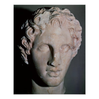 Head of Alexander the Great Poster