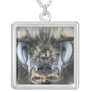 Head of bumblebee silver plated necklace