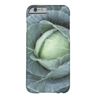 Head of cabbage with drops of water on it, barely there iPhone 6 case