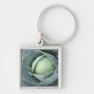 Head of cabbage with drops of water on it, Silver-Colored square key ring