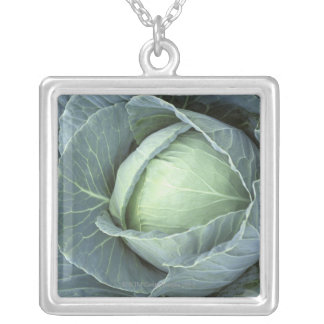 Head of cabbage with drops of water on it, silver plated necklace