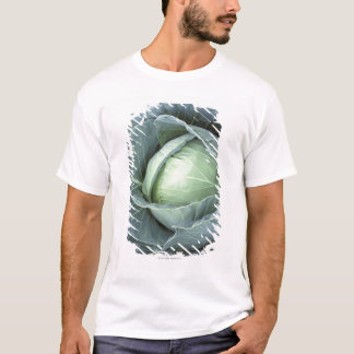 Head of cabbage with drops of water on it, T-Shirt