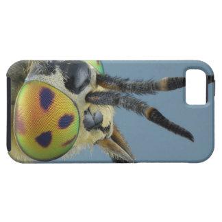 Head of deer fly iPhone 5 case