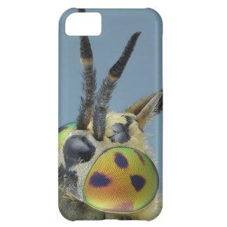 Head of deer fly iPhone 5C case