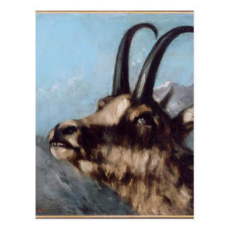 Head of Gazelle by Gustave Courbet Postcard