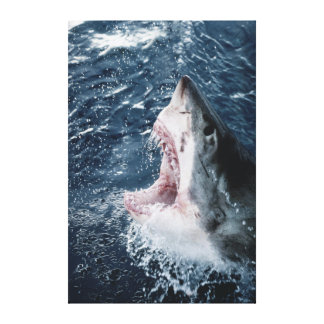 Head of Great White Shark Canvas Print