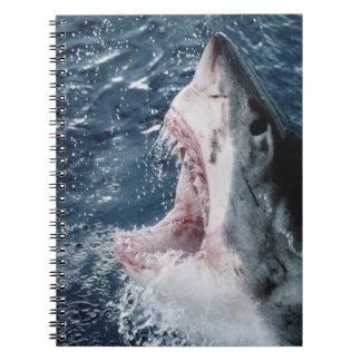 Head of Great White Shark Spiral Notebook