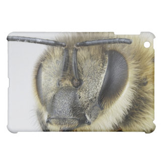 Head of honeybee cover for the iPad mini