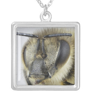 Head of honeybee silver plated necklace