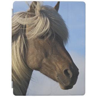 Head of Icelandic horse, Iceland iPad Cover