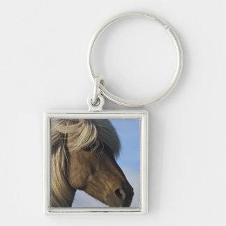 Head of Icelandic horse, Iceland Key Ring