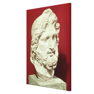 Head of Jupiter Stretched Canvas Print