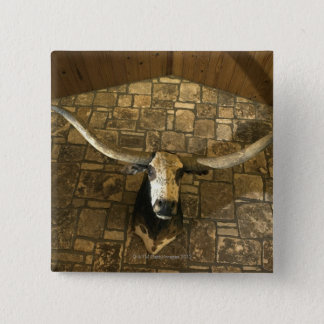 Head of longhorn steer mounted on wall 15 cm square badge