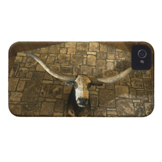 Head of longhorn steer mounted on wall iPhone 4 cover