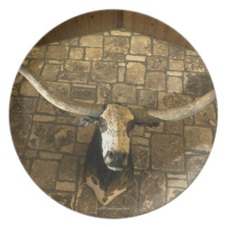 Head of longhorn steer mounted on wall plate