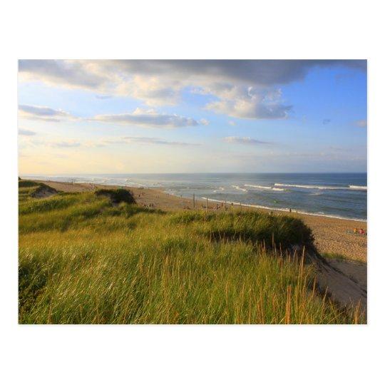 Head of the Meadow Beach Truro Cape Cod Postcard