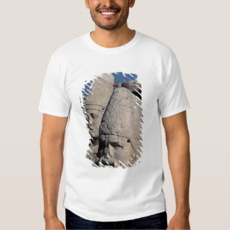 Head of Zeus-Oromandes and a goddess Tee Shirt