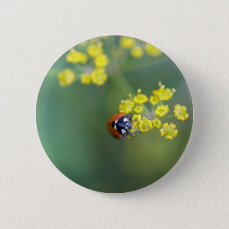 head on ladybug 6 cm round badge