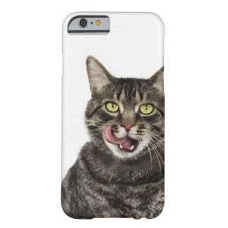 Head shot of a male domestic tabby cat licking barely there iPhone 6 case