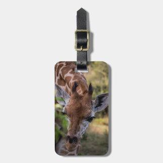 Headshot of a Giraffe Luggage Tag