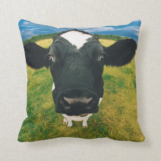 Headshot of Friesian Cow Cushions