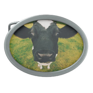 Headshot of Friesian Cow Oval Belt Buckles