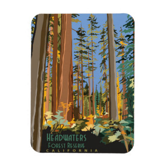 Headwaters Forest Reserve Rectangular Photo Magnet