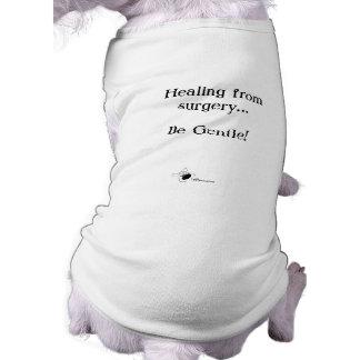 Healing from Surgery...Be Gentle Sleeveless Dog Shirt