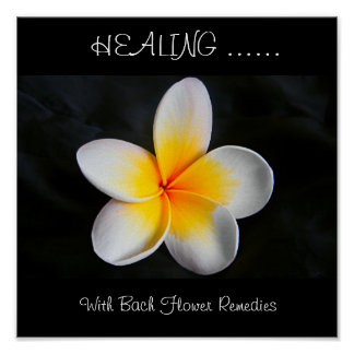 Healing with bach flower remedies poster