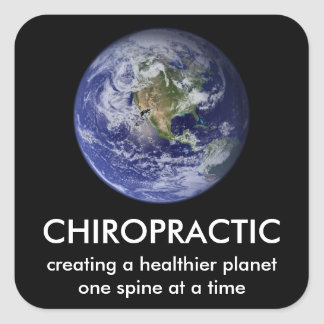 Healthier Planet Chiropractic Stickers