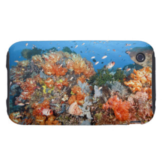 Healthy reef structure, Komodo National Park Tough iPhone 3 Covers