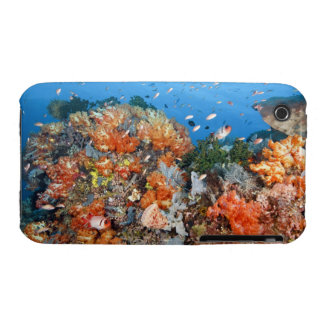 Healthy reef structure, Komodo National Park iPhone 3 Case-Mate Cases