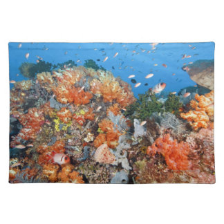 Healthy reef structure, Komodo National Park Placemat