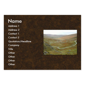 Healy Pass, Beara Peninsula, Ireland. Pack Of Chubby Business Cards