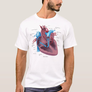 Heart Anatomy cool t-shirt