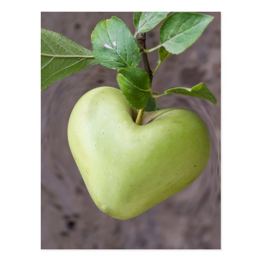 heart apple on tree postcard