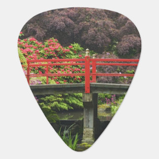 Heart Bridge with blossoming rhododendrons, Guitar Pick