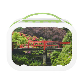 Heart Bridge with blossoming rhododendrons, Lunch Box