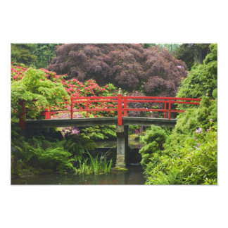 Heart Bridge with blossoming rhododendrons Photographic Print
