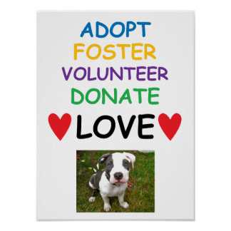 Heart Dog Poster, Adopt Foster Volunteer Love Poster