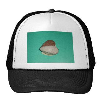 HEART.JPG TRUCKER HAT