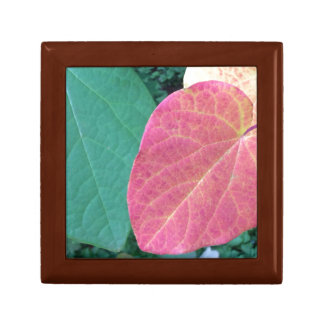 Heart Leaves of Yellow Red Green - Small Square Gift Box