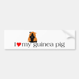 Heart Lyric Bumper Sticker