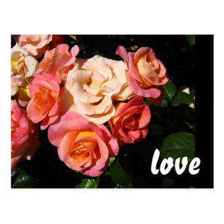 Heart of Roses * Love * Wedding Postcard