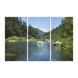 Heart of the Feather River Triptych Wall Art