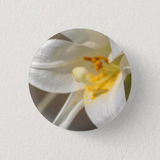 Heart of the Lily pin