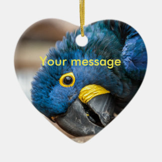 Heart ornament with cute Hyacinth Macaw parrot