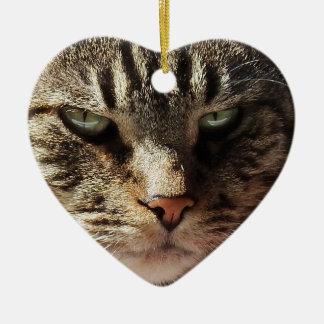 Heart Shaped Cat Valentine's Day Christmas Ornament